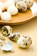boiled quail eggs - stock photo