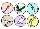 An Illustration Set of Beautiful Wild Birds Stock Illustration