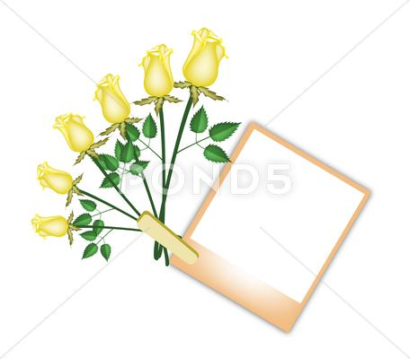 Stock Illustration of Six Beautiful Roses with Brown Blank Photo
