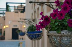 FLOWERS DECORATION IN NICE VILLAGE - stock photo
