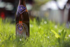 Beer in Grass Stock Photos