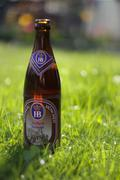 Beer in Grass - stock photo