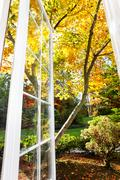 view of a sunny fall afternoon - stock photo