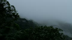 Timelase of Fog Forming over Tree Tops, Tijuca Brazil HD Video Stock Footage