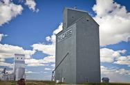 Stock Photo of Montana Elevators