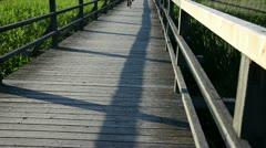 Wooden board plank bridge railings through lake bicycle pass Stock Footage