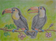 Two Couple Toucans - stock illustration
