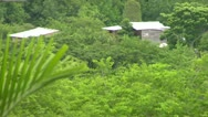 Stock Video Footage of Shack in the Mountains of Negril