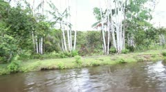 0011-Amazon-River-House-Fazenda-Amapa-Caboclo-2 Stock Footage