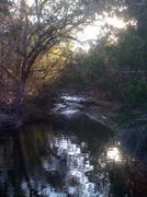 Stock Photo of Hidden in Wilderness