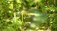 Roaring River, Jamaica, Paradise Cove Stock Footage