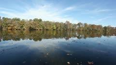 Leaves floating on river landscape Stock Footage