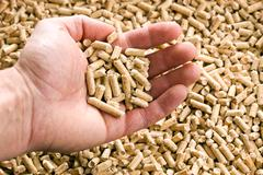 wooden pellet .ecological heating - stock photo