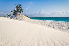 dunes and wild beach - stock photo