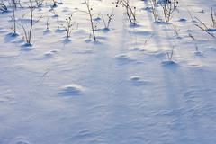 Snow surface Stock Photos