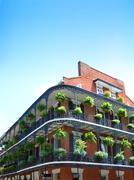 New Orleans arkkitehtuuri Kuvituskuvat