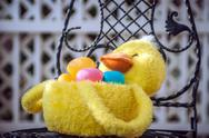 Easter duck basket Stock Photos