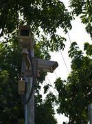 Piilotettu turvallisuus kamera tai valvontakamera vehreässä puistossa Kuvituskuvat