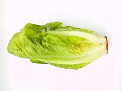 fresh cos salad isolated on white background - stock photo