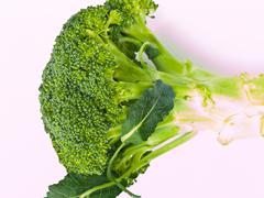 Fresh broccoli, brassica oleracea var. italica, isolated on white background Stock Photos