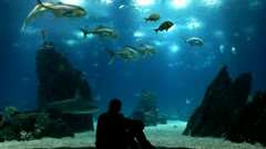 Man in oceanarium enjoying Stock Footage