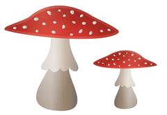 Stock Illustration of mushroom illustration - amanita muscaria