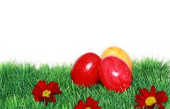 beautiful easter motive - stock illustration