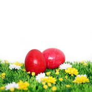 two red eastereggs - stock photo