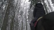 Young woman riding her horse in winter forest Stock Footage
