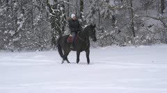Young woman horseback riding on a snowy glade - stock footage