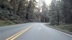 Driving through Redwoods Fast Realtime Jedediah Smith 3 Stock Footage
