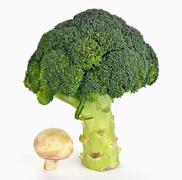 Broccoli and a mushroom Stock Photos