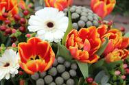 Gerberas and tulips Stock Photos