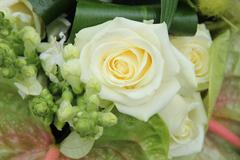 Green white floral arrangement Stock Photos