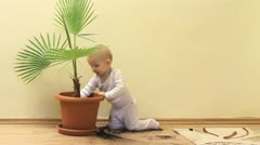 Amusing little baby taking out the soil from flower pot and throwing to floor Stock Footage