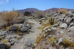 Anza Borrego desert trail Stock Photos