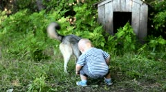 Child playing with a dog in the yard Stock Footage