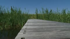 View from empty wooden pier at reedland blue sky - low angle. Stock Footage