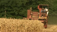 Stock Video Footage of INDS-0004 Wheat with combine harvesting blurred