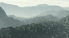 Jungle 2 720 Stock Footage