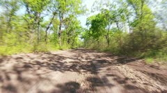 Motor racing in the spring forest Stock Footage