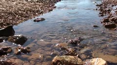 Sparkling water of Estuary Stock Footage