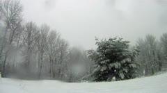Snowfall Timelapse Stock Footage