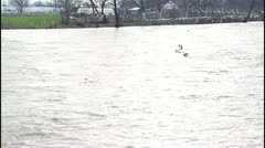 Flood and river Stock Footage