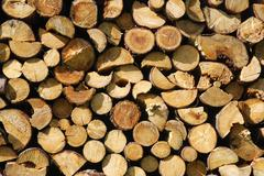 woodpile - stock photo
