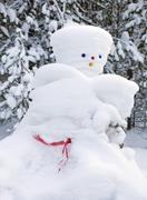 Snowman made by nature and resourceful man Stock Photos