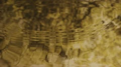 Water drops in slow motion, reflection of autumn leafs Stock Footage