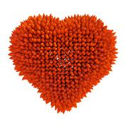 dangerous love: sharp acidotus heart shape - stock illustration