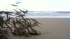 By the sea - stock footage