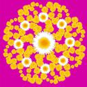 Dandelion floral pattern on a pink background with daisies Stock Illustration